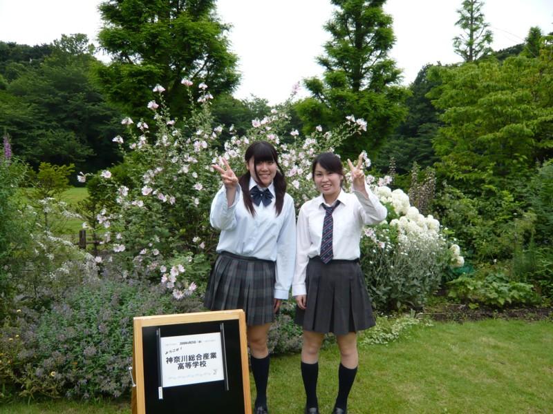 神奈川総合産業高等学校制服画像